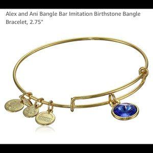 Alex and Ani Bangle Bar Imitation Birthstone